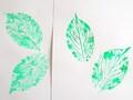 植物の葉っぱで「葉拓」実験