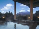 日本の歩道吊橋について -