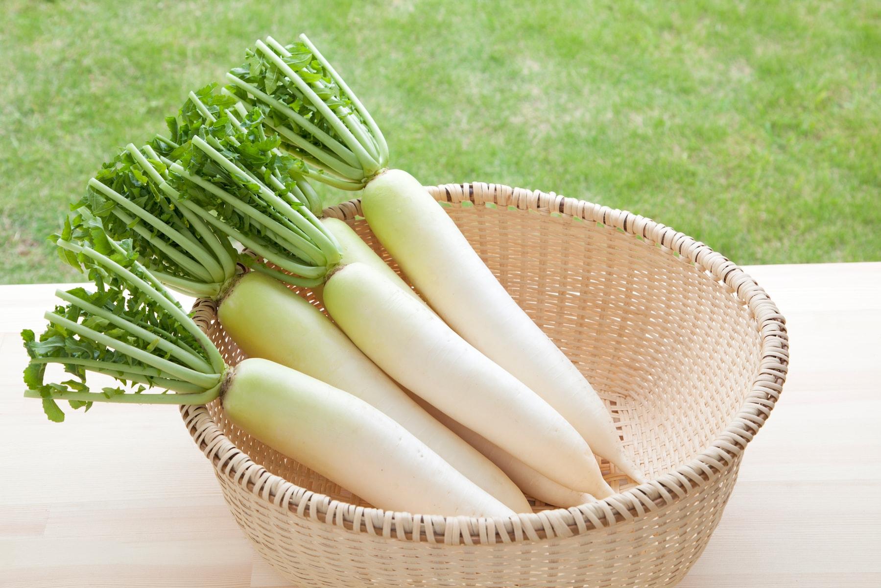 【毎日の野菜・フルーツレシピ】大根の下ごしらえ・切り方