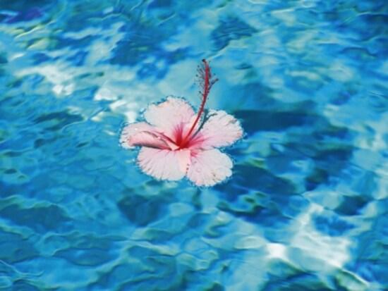 水のような透明感のあるブルーは、「水」の気を強めます