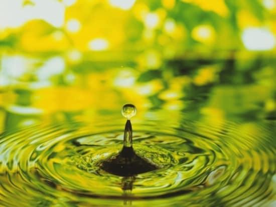 鮮やかなイエローグリーンは、出会い運を引き寄せます