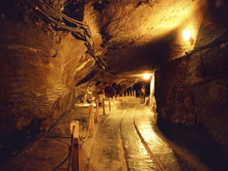 ヴィエリチカ岩塩坑の画像 p1_22