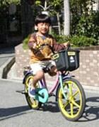 自転車の 自転車 練習方法 大人 : 補助輪無し自転車に乗る練習 ...