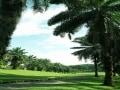 マレーシアのゴルフラウンドの予算