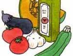 夏のマタニティ食は夏野菜をメインに