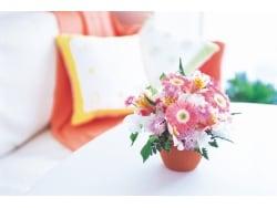 色と香りを味方にする「ガーリー風水」で運気アップ!