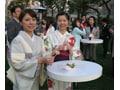 着物で愉しむ東京ミッドタウンの桜イベント