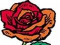赤いシリーズ2005『赤い疑惑』放送 冬ソナ+牡丹と薔薇=大映テレビ