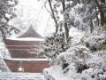 冬におすすめの寺と神社