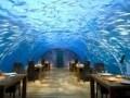 モルディブの個性派リゾートホテル