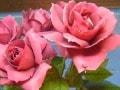 フラワーアレンジに役立つ!花の小事典vol.17 【6月の花】バラ・薔薇・ローズ
