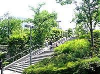 赤坂の公園を抜けて洋食を食べに行く