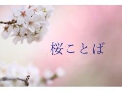 花あかりに誘われて…さりげなく桜ことば