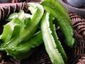 新顔野菜の四角豆って知ってる?