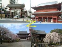浜松町駅・大門駅から増上寺へ向かう時の風景
