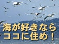 海が好きならココ!東北・北海道