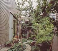 屋上緑化は一般の住宅でもできる