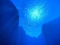 ミネラル不足の現代人に注目の海洋深層水!