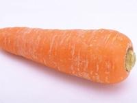 秋野菜から学ぶあなたが摂りたいサプリVol1