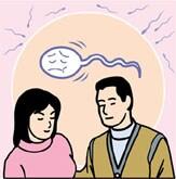 不妊治療、精子(精液)検査について