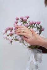 爪は健康のバロメーター きれいな爪になりたい!