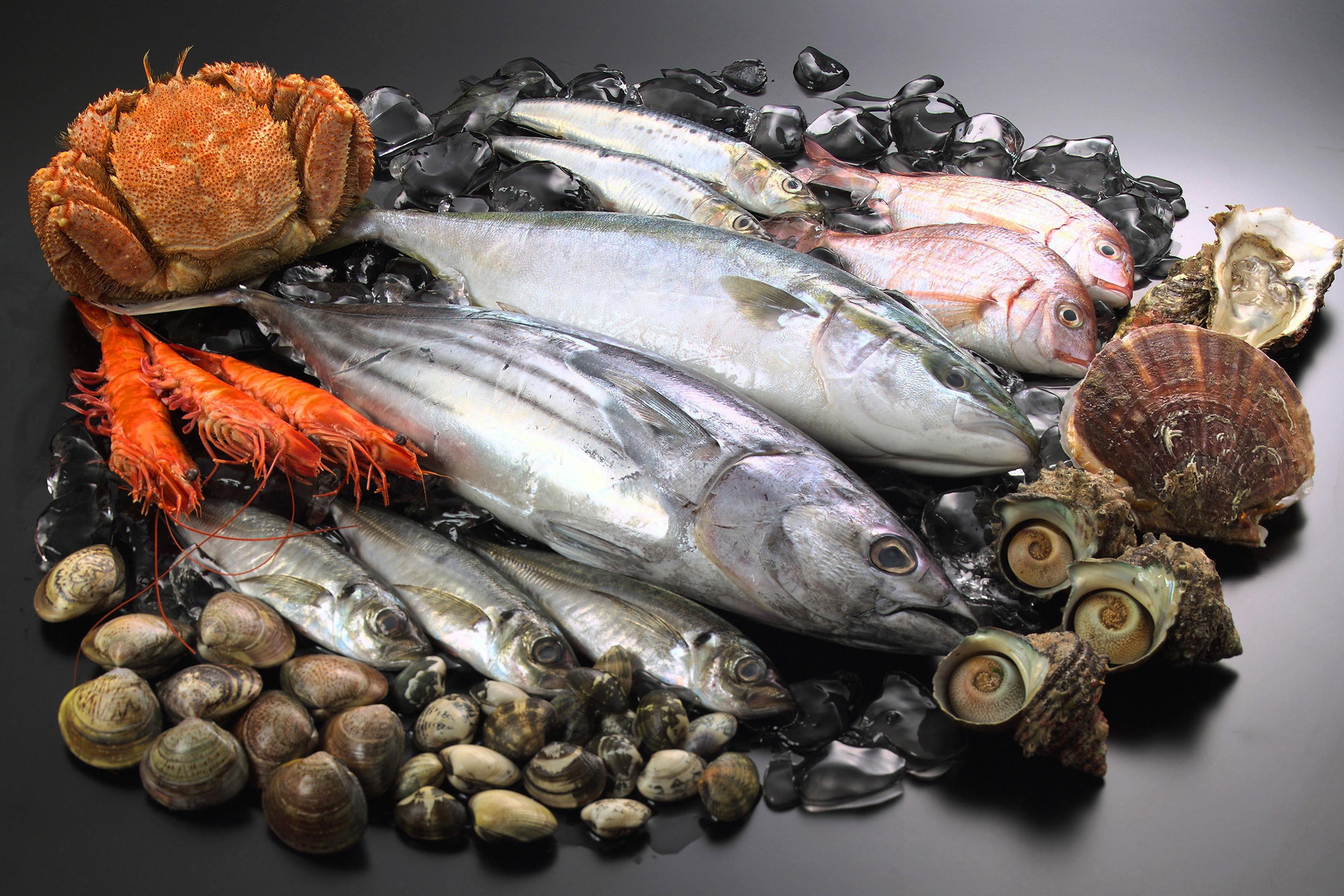 魚はアレルギー体質を改善する?