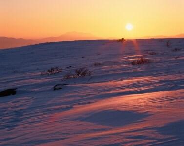 日照時間の短くなる秋から冬のみ、うつ症状が出る「冬季うつ病」。冬季の日照量不足が最大の原因