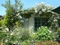 庭づくりとプランニングのヒント