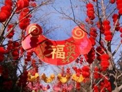 中国の旧正月(春節)基礎知識と2017年最新情報