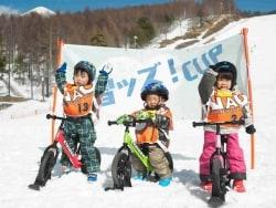 関東近郊の子連れスキーにおすすめのホテル