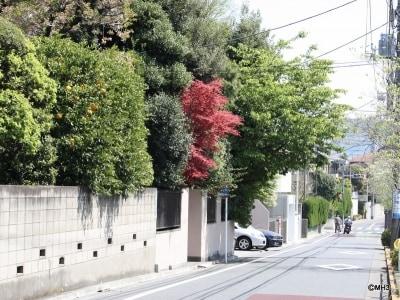 「第一種低層住居専用地域」の街並み(目黒区下目黒6丁目)