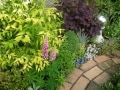 陽が差さなくても植物が多いガーデニング