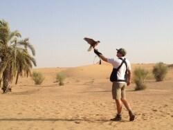 ドバイの砂漠サファリは刺激的
