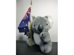 オーストラリアの定番土産に コアラのぬいぐるみ