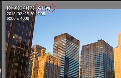 Lightroom5で開いた、拡張子が「.ARW」形式(SONYのカメラの)Raw画像。
