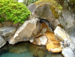 日本三大美肌の湯 嬉野温泉