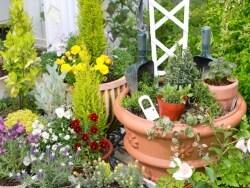 ガーデニング・家庭菜園での植物かぶれ予防と治療