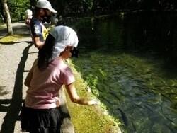 「さかなと森の観察園」で魚の研究を楽しく学ぶ!