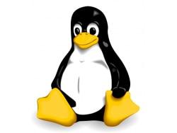 Linux(リナックス)とは?