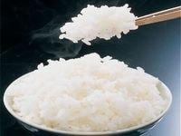 お米が太るは本当!?