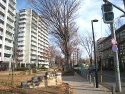 豊田、団地建直しで変化進行中、水と緑の街