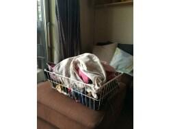 洗濯の効率を上げる導線とバスケット活用術