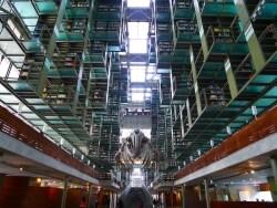 まるでSF?世界一クールなメキシコシティの図書館