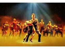 興奮のダンス『バーン・ザ・フロア』、人気ペアに聞く