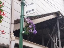 「堀切菖蒲園」駅周辺の5つの商店街をそぞろ歩き
