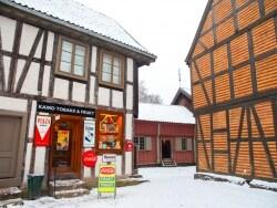 アナ雪の世界観が体験できる!ノルウェー民族博物館