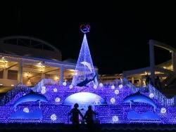 横浜クリスマスイルミネーション2014