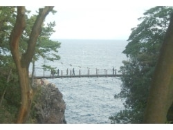 吊り橋にドキドキ、伊豆・城ヶ崎海岸/静岡
