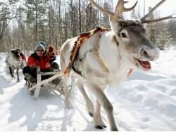 冬季限定!北欧のウィンターアクティビティ特集