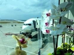 まだ間に合う! 夏休みの航空券をお得に予約する方法